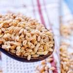 不滿澳洲支持調查疫情源頭!中國對大麥開徵關稅 澳洲貿易部長喊「非常失望」