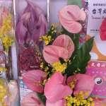 疫情影響切花銷量銳減 中市農業局祭出花卉多元振興方案