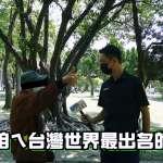 詐騙集團、提款機台語怎麼說?台灣44種方言你會幾種?街訪竟得知連英國人都瘋學台語?【影音】