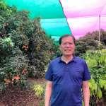 高雄農業產官學合作  建立玉荷包網室栽培模式