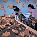 鶯歌陶博館「亞熱帶花園︰彩繪陶瓷展」 化身格列佛搶看萌系怪獸小島