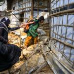 世界難民日》「故鄉內的異鄉人」全球「境內難民」突破4000萬人 世展會籲響應救援