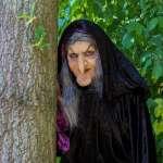 為何童話中一定是「老」巫婆跟「小」仙女?揭密自古以來的「老年歧視」:年紀大錯了嗎