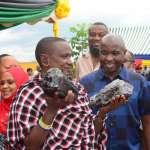 挖到寶!發現「史上最大」珍稀寶石 政府奉上77億巨額支票買下 坦尚尼亞礦工一夕成富翁