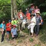珍貴大板根老樹溪流生態 石碇輕旅行值得一遊