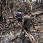 亞馬遜叢林的「洗黑牛」骯髒事》焚林燒掉5個葡萄牙、原住民遭殺害......大廠JBS遭爆販售違法牛肉