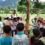 小朋友暑假最棒去處  造訪忠寮社區探索獨角仙生態及百年古厝