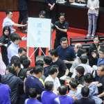 陳瑩在錄影卻顯示有投票?藍營訴求審查無效、不能投票 議場再爆衝突