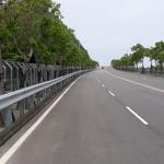 「苗29線」10項生態設計  讓人和石虎都能平安回家的幸福公路