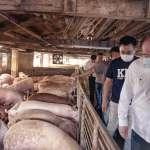 江啟臣赴花蓮聽養豬業心聲 藍營基層串連「想要沒瘦肉精的滷肉飯」
