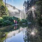 【2020爬山步道推薦】阿里山竟有隱藏版景點!在地人私藏的阿溪縱走3大絕美景點一次全公開