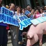 全代會外》江啟臣宣示啟動反瘦肉精美豬公投 西遊記行動劇、豬模型超搶鏡