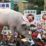 施威全專欄:美國三招進逼,台灣吞下瘦肉精