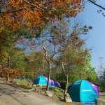 維護露營場所公安 中市府設露營場安全及管理聯合稽查小組