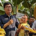 劍及履及「邁」力顧蕉農 口罩國家隊採購250萬高雄蕉