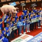 「萊豬議題轉向食安導致抗爭加強」 資深綠委:有2018大敗的味道