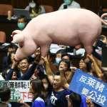 瘦肉精美豬開放後,台灣有望加入CPTPP?王美花談「最後障礙」