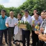 陳其邁推薦高雄木瓜 打造高雄農產直銷市集
