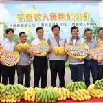 農委會的香蕉保險,為何淪為口水戰?