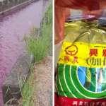 旗山區灌溉渠道遭農藥染紅 高市環保局查獲水污染