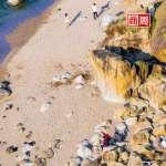 海濱另類抓寶:海廢圖鑑奪大獎、用垃圾玩羅馬競技