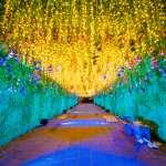 鬥陣來去府中!府中藝術裝置主燈「魔豆‧魔豆」展現獨特城市魅力