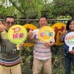 勞動部南區銀髮中心 助療育系園藝造景師重返職場