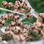 「南非強力球」開獎,為何被認為是一場騙局?頭獎號碼竟是:5、6、7、8、9和10