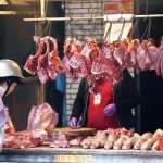 進口千噸美豬沒流入市面?羅智強:難道都蔡英文吃了?