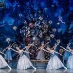 俄芭蕾舞團4人中新冠肺炎首演喊卡 陳時中:再出現陽性就全部停演