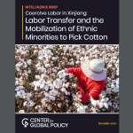 習近平的脫貧計畫造就「帶血的新疆棉花」?華府智庫指控中國政府強迫勞動,北京回嗆「作者造謠」