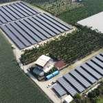老牌醬油廠萬家香家族攻綠電再下一城   恆利能源攜手遠雄人壽、日商歐洛斯電力設立太陽能電廠