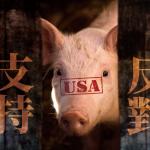 觀點投書:萊豬表決大戰,「歷史和解」當優先於「大局承擔」