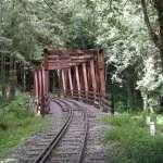 受林鐵火車出軌影響!阿里山水山步道延至110年4月開放