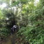 體驗原鄉文化生態 雙崎部落埋伏坪療癒系祕境