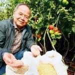 產品價格比黃金還貴!小業務打造種子界台積電,沒有他「墨西哥餐桌會暴動」