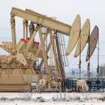 300字讀電子報》冷空氣醞釀的石油危機,油價上衝至60美元
