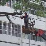 吊掛作業屬高風險作業 物體飛落砸傷人員為最常見災害類型