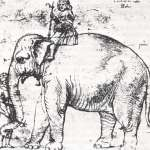 動物外交》亞洲象成為教宗加冕禮物 漢諾在梵蒂岡的政治奇幻之旅