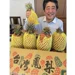 安倍晉三猛讚「台灣鳳梨好吃」!日網淚喊:一般人買不到