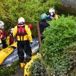 「你的媽媽在哪裡?」年幼小鬚鯨誤入泰晤士河,倫敦消防隊成功救援