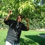 張桂越專文:管管在馬其頓種過一棵樹