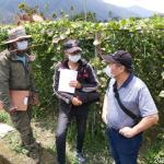 高雄4位植物醫師進駐產地   加倍把關農產安全