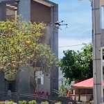 全國首創科技防疫 中市環保局啟動泰安國小無人機消毒