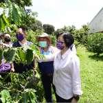 灌溉水不夠用 彰縣府補助芬園鄉農會咖啡產銷班購儲水桶