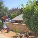 有片》為護愛犬勇氣大爆發!加州17歲少女徒手推倒闖宅熊,30秒驚險影片全曝光
