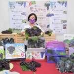 彰化葡萄進入盛產 縣府線上促銷吃在地享當季