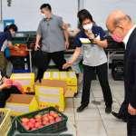 疫情影響、氣候異常  芒果價格一度崩跌