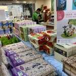 檳榔廢園計畫 打造守護健康與生態永續幸福