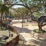 新竹孩子暑假放風指南:市立動物園、公園遊具27日起重新開放